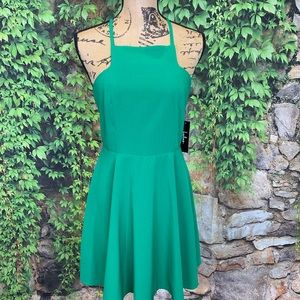 NWT LULU'S Call to Charms Skater Dress, M